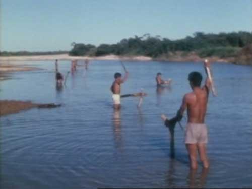 川に毒を投入する漁撈
