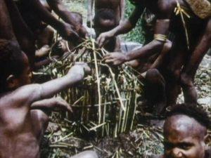 ECフィルムE2729アイポ族 (西ニューギニア 中央高地) 家の模型作り(1975)