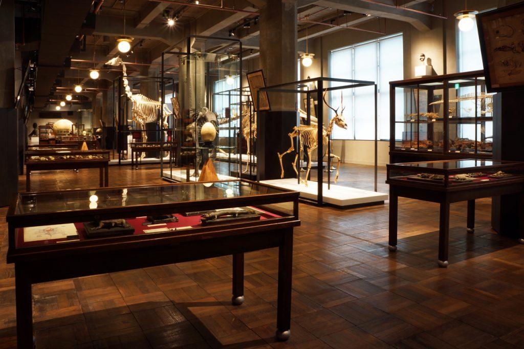 インターメディアテク2階常設展示風景 (写真©インターメディアテク、 空間・展示デザイン © UMUT works 2013-)
